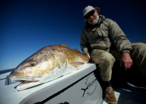 Louisiana Fly Fishing Redfish