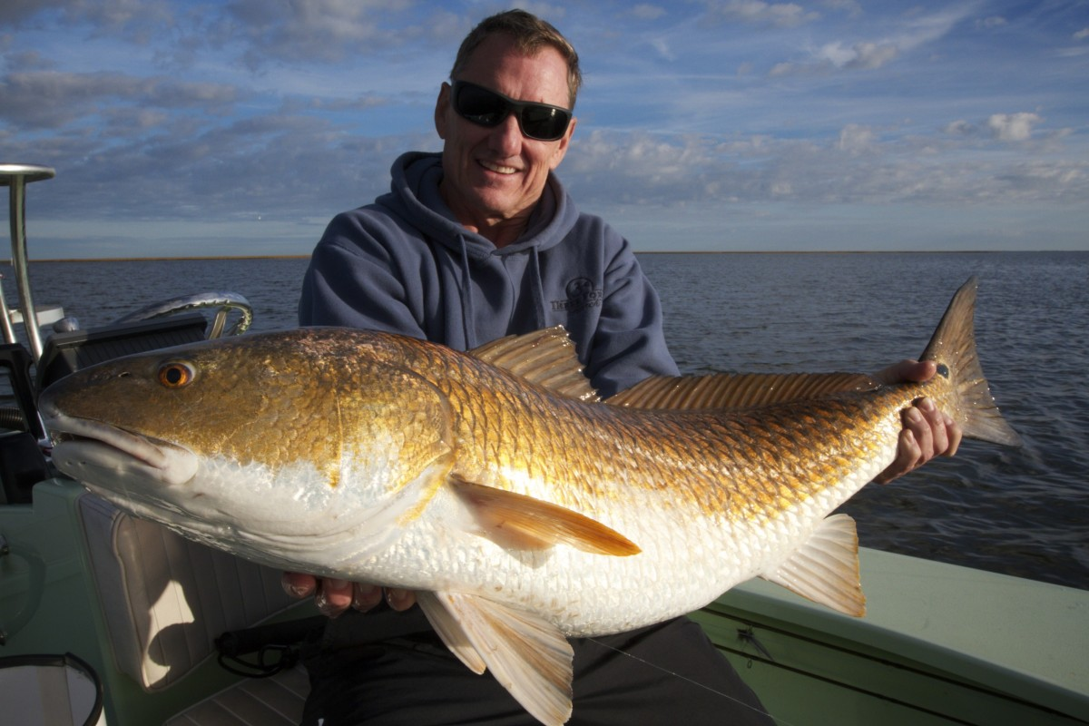 Bull redfish archives page 3 of 3 salted flats fly fishing for Red fish pictures