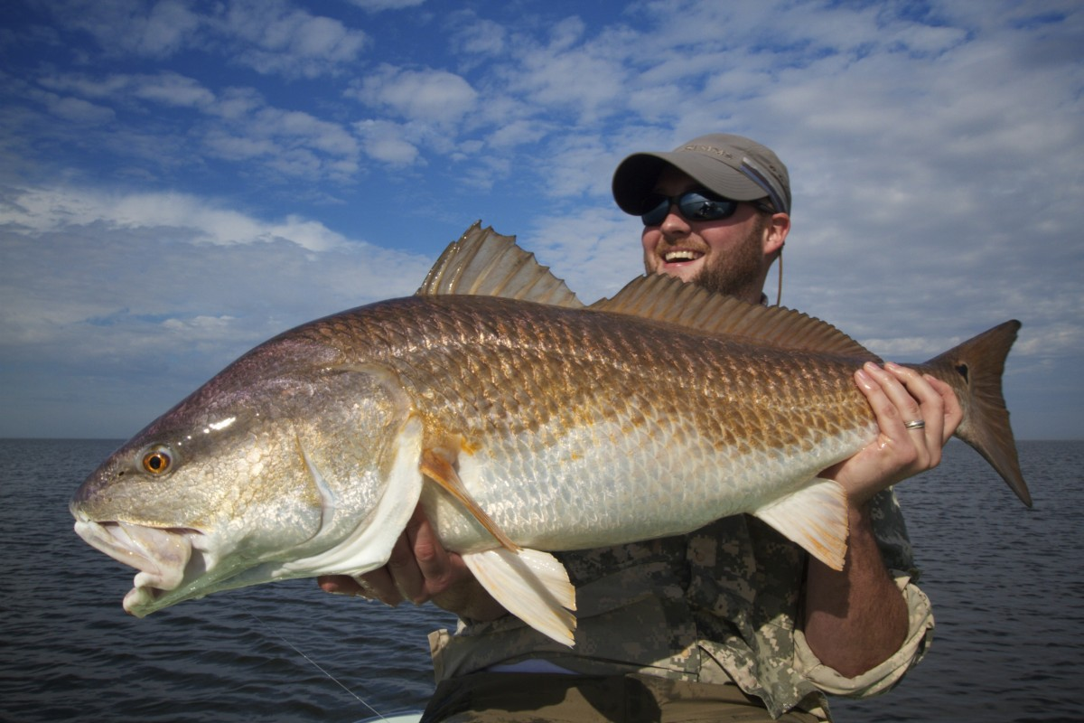 Biloxi marsh fly fishing for Louisiana redfish fly fishing