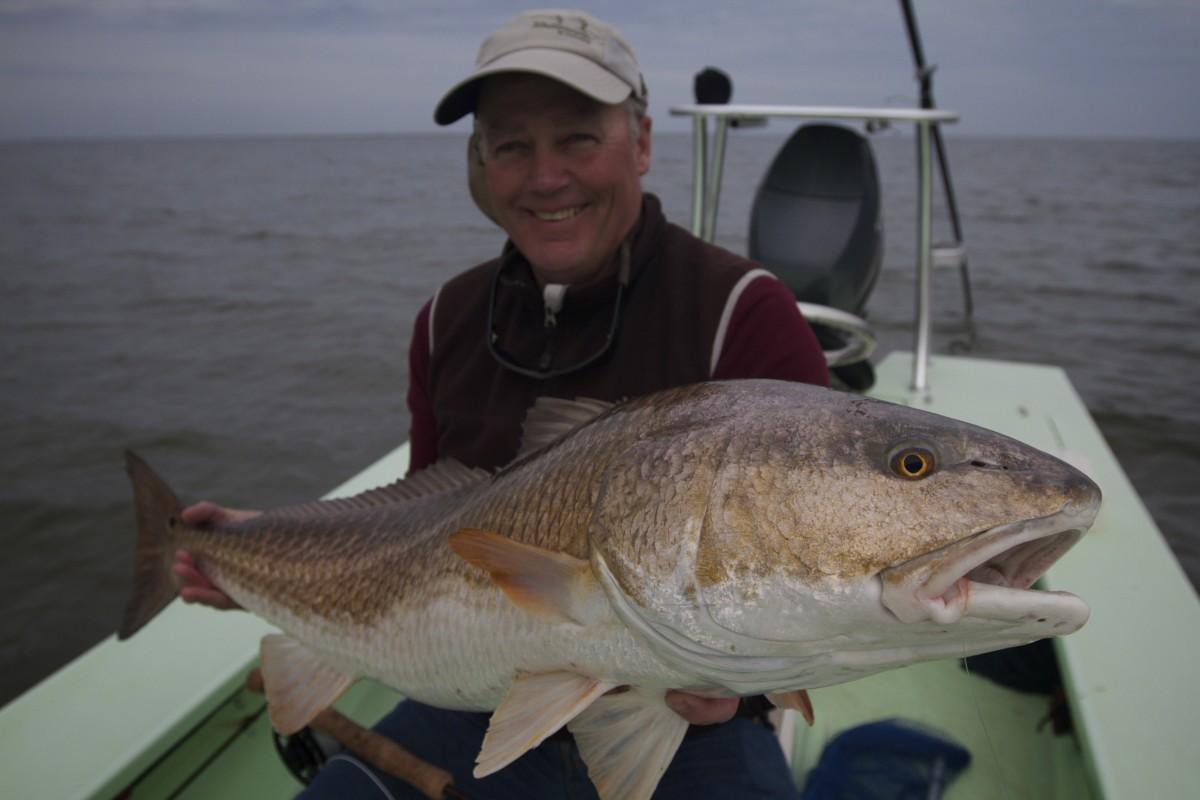 Louisiana Bull Redfish