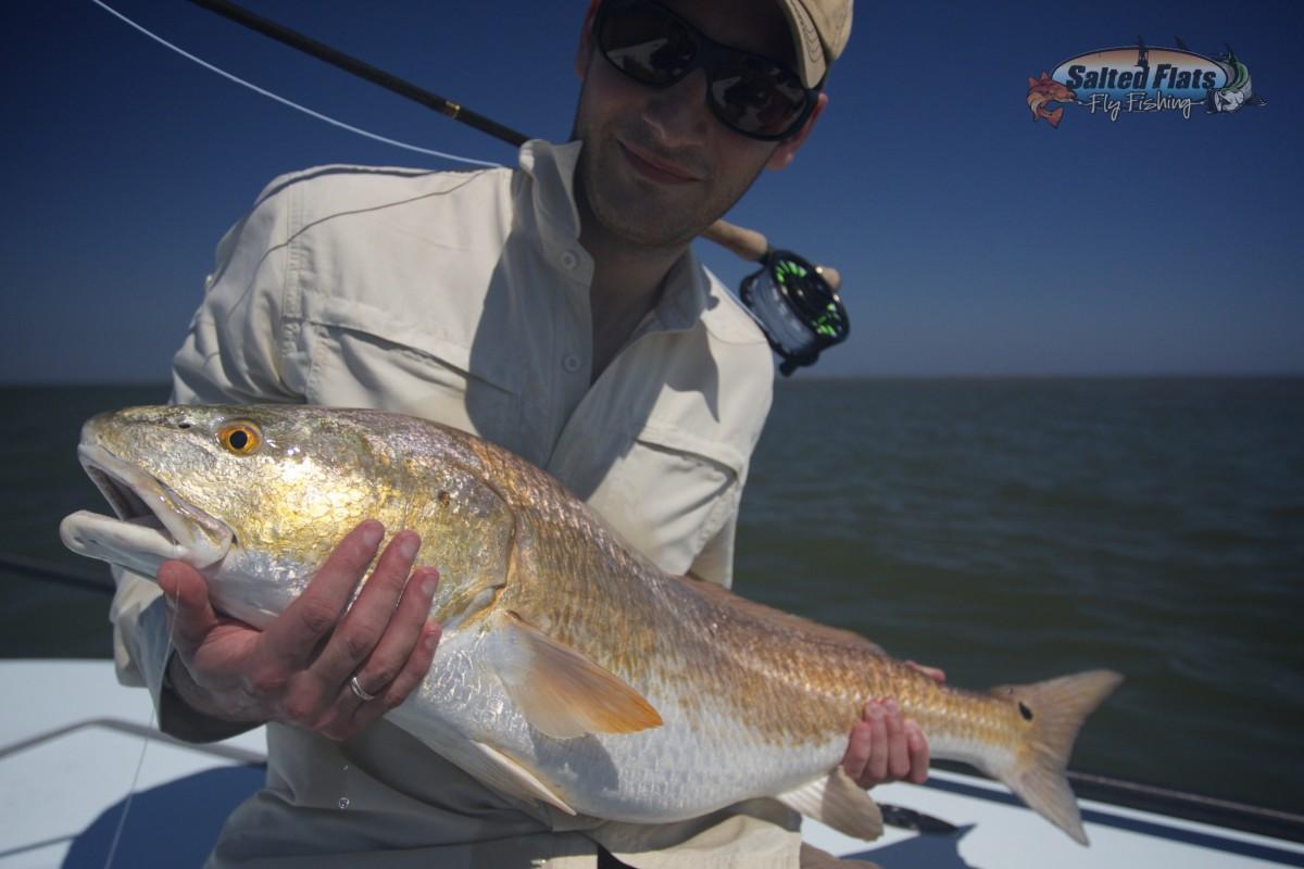 Fly fishing louisiana bull redfish for Buy louisiana fishing license online