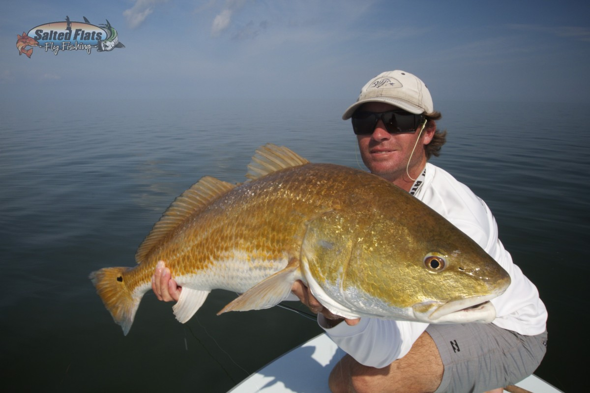 Fly fishing new orleans redfish for Louisiana redfish fly fishing