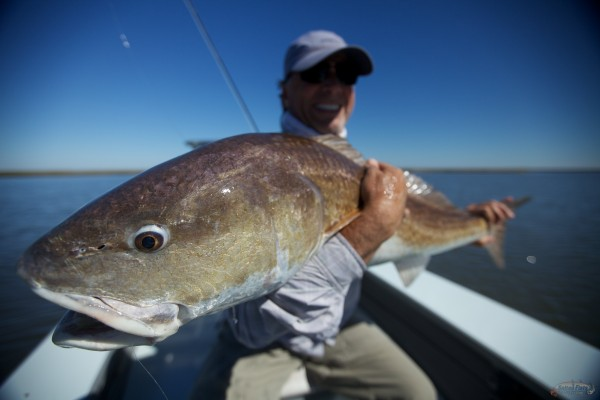Fly Fishing the Redfish of the Louisiana Marsh