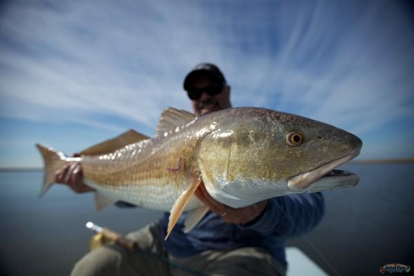 Fly fishing the Flats of Louisiana.
