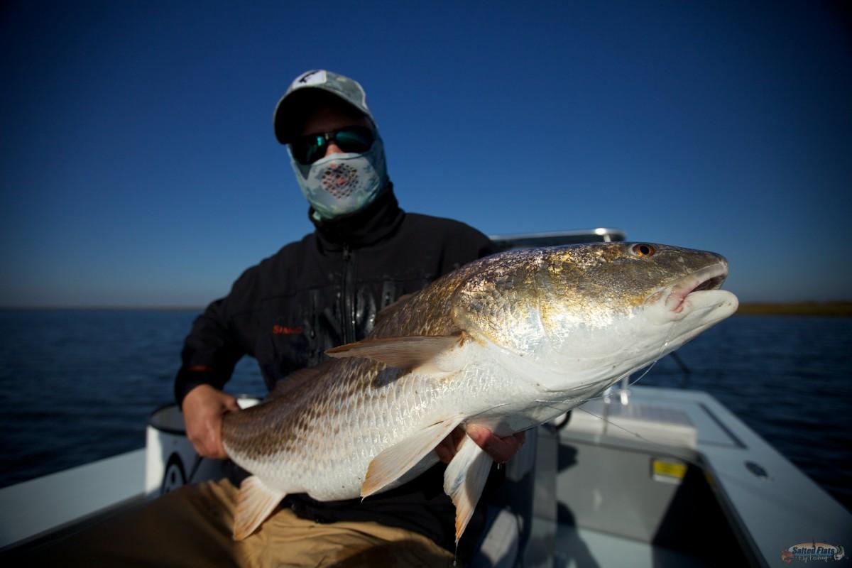Wintertime fly fishing in louisiana for Louisiana fly fishing