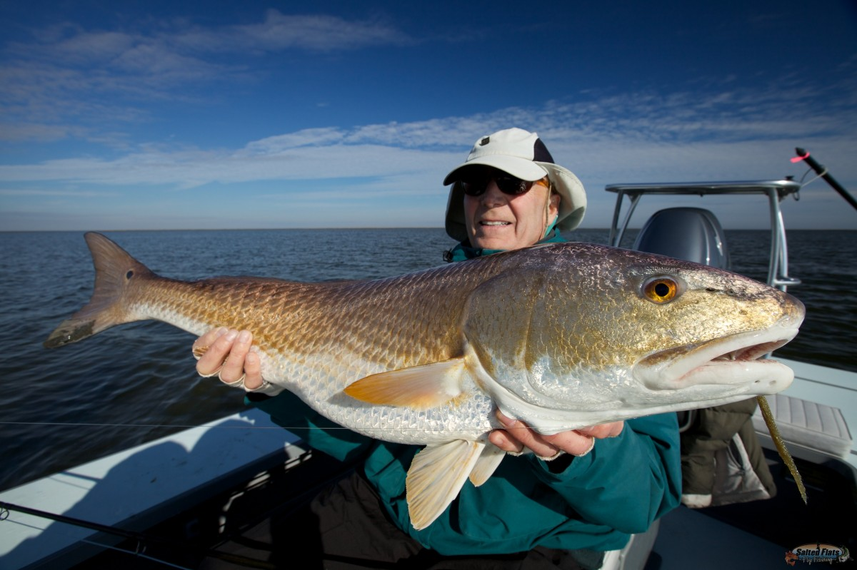 Redfish guide for Louisiana redfish fly fishing