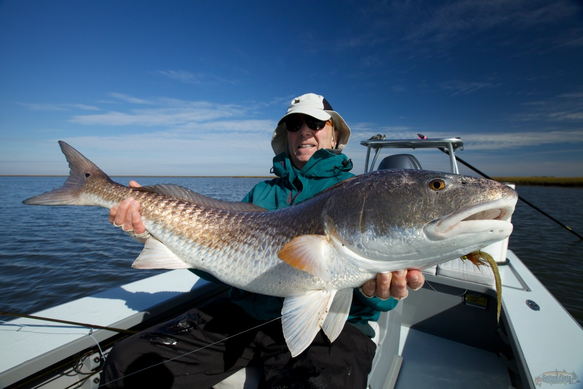 Redfish guide for Redfish fly fishing