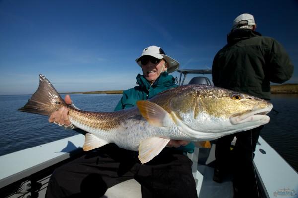 New Orleans Bull Redfish