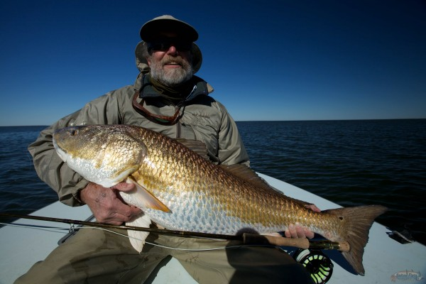 30 pound Redfish