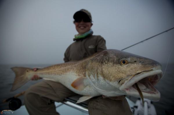 bull redfish on fly