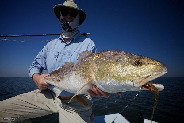 Fly Fishing New Orleans Redfish