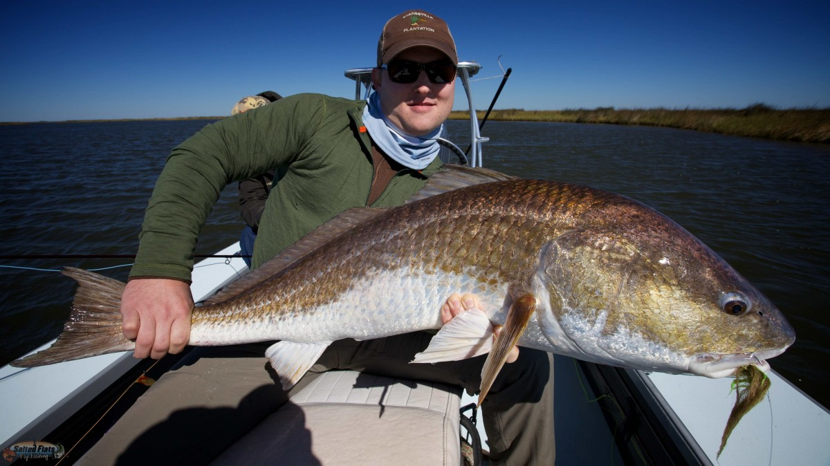 Fly fishing new orleans redfish in october for New orleans fish