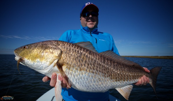 Fly Angling in Louisiana for Redfish