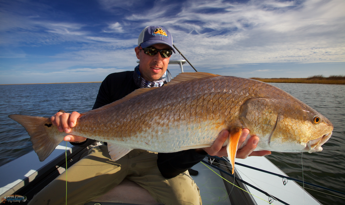 November louisiana marsh fly fishing for Fishing in louisiana