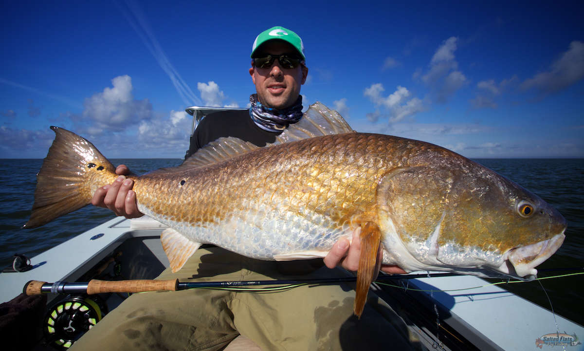 Lousiana redfish fly fishing report archives page 3 of for Louisiana redfish fly fishing