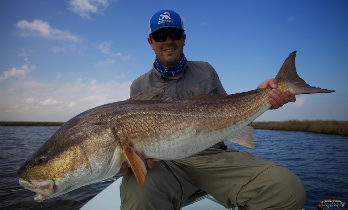 March charter fishing louisiana for Fly fishing for redfish
