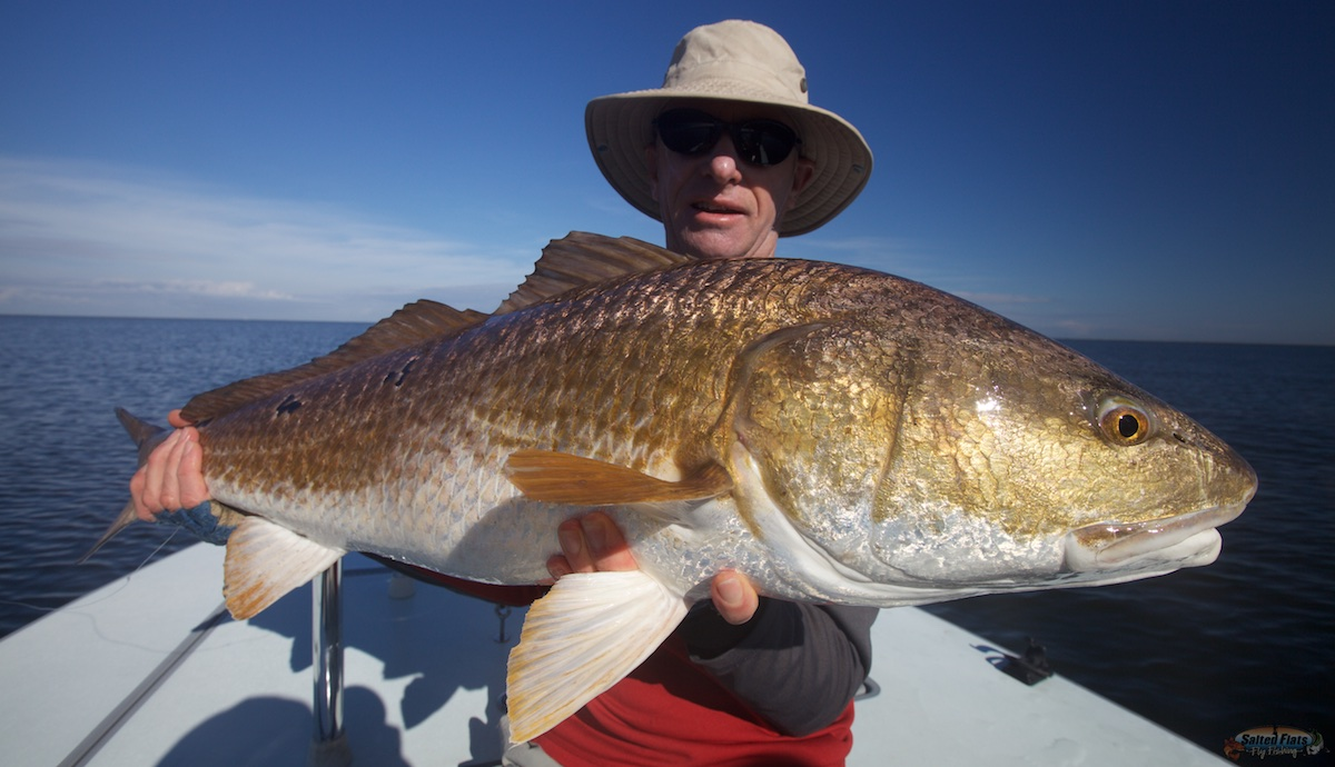 Fly fishing louisiana in december for Fly fishing redfish