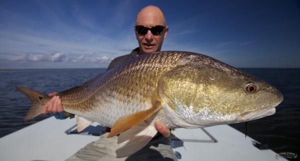 Louisiana Marsh Bull Redfish on Fly