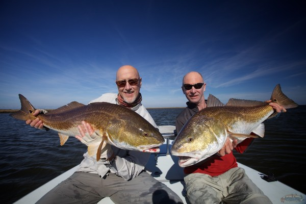 Redfish Fly Fishing in Louisiana